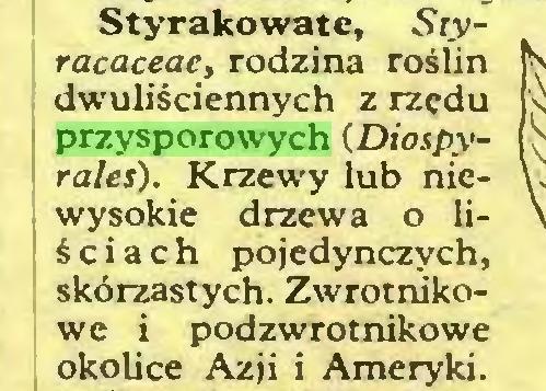 (...) Styrakowate, Styracaceae, rodzina roślin dwuliściennych z rzędu przysporowych (Diospyrales). Krzewy lub niewysokie drzewa o liściach pojedynczych, skórzastych. Zwrotnikowe i podzwrotnikowe okolice Azji i Ameryki...
