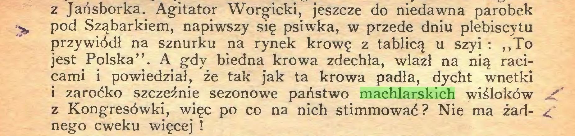"""(...) z Jańsborka. Agitator Worgicki, jeszcze do niedawna parobek ^ pod Sząbarkiem, napiwszy się psiwka, w przede dniu plebiscytu przywiódł na sznurku na rynek krowę z tablicą u szyi : ,,To jest Polska"""". A gdy biedna krowa zdechła, wlazł na nią racicami i powiedział, że tak jak ta krowa padła, dycht wnetki i zaroćko szczeźnie sezonowe państwo machlarskich wiśloków / z Kongresówki, więc po co na nich stimmować? Nie ma żad- <' nego cweku więcej !..."""
