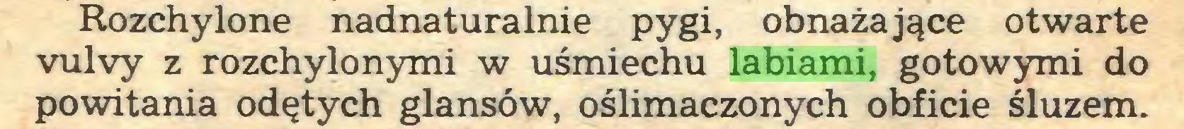 (...) Rozchylone nadnaturalnie pygi, obnażające otwarte vulvy z rozchylonymi w uśmiechu labiami, gotowymi do powitania odętych glansów, oślimaczonych obficie śluzem...