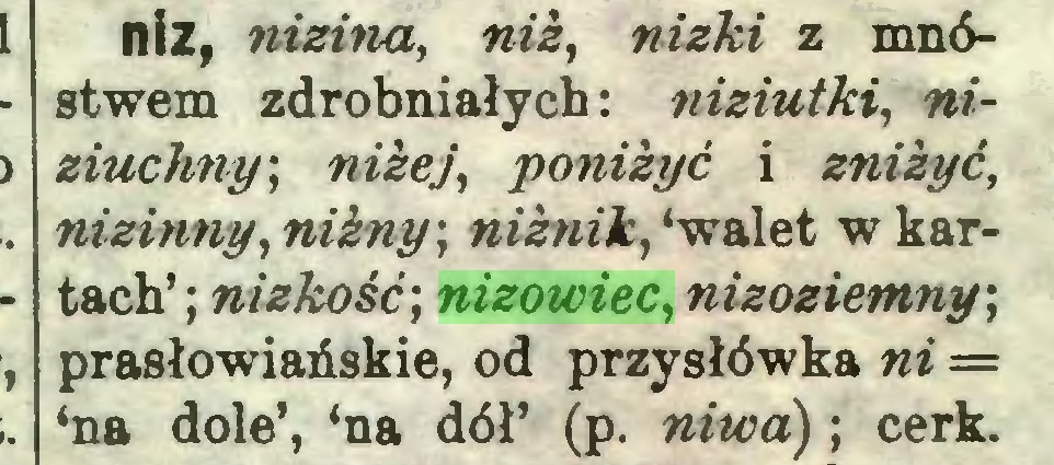 (...) niz, nizina, niz, nizki z mnóstwem zdrobniałych: niziutki, niziuchny; niżej, poniżyć i zniżyć, nizinny, nizny; niżnik, 'walet w kartach' ; nizkość; nizowiec, nizoziemny; prasłowiańskie, od przysłówka ni = 'na dole', 'na dół' (p. niwa); cerk...
