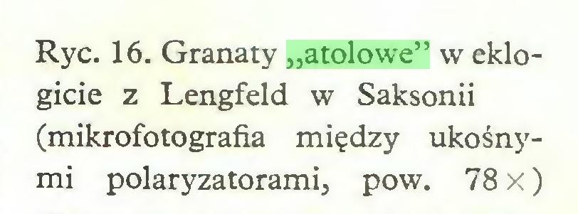 """(...) Ryc. 16. Granaty """"atolowe"""" w eklogicie z Lengfeld w Saksonii (mikrofotografia między ukośnymi polaryzatorami, pow. 78 X)..."""