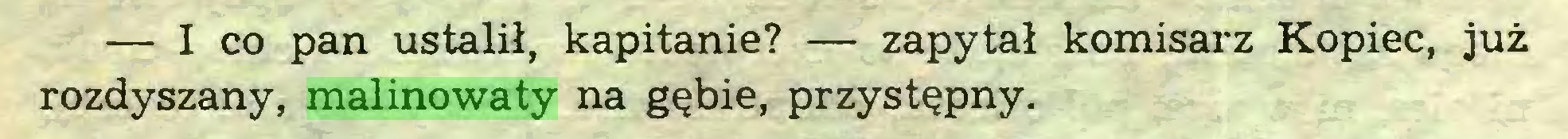 (...) — I co pan ustalił, kapitanie? — zapytał komisarz Kopiec, już rozdyszany, malinowaty na gębie, przystępny...