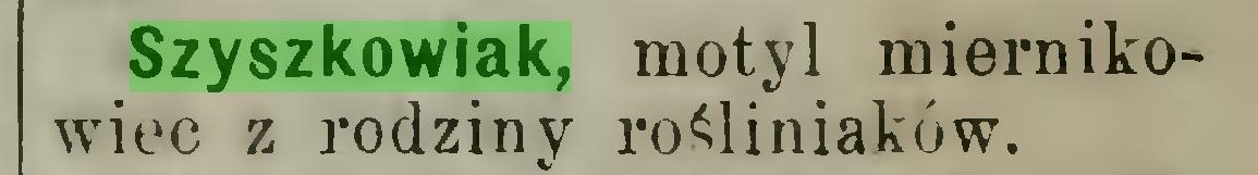 (...) Szyszkowiak, motyl miernikowiec z rodziny rośliniaków...